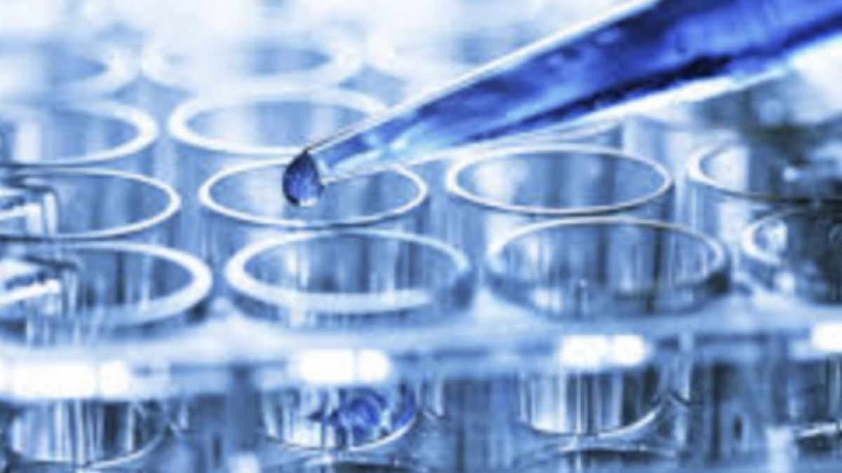 Axsome Therapeutics (AXSM) Up Nearly 500% in 2019
