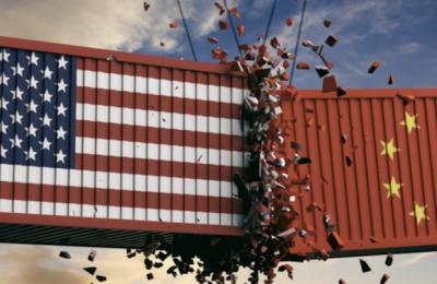 Trade War Chaos: How Investors are Protecting Portfolios
